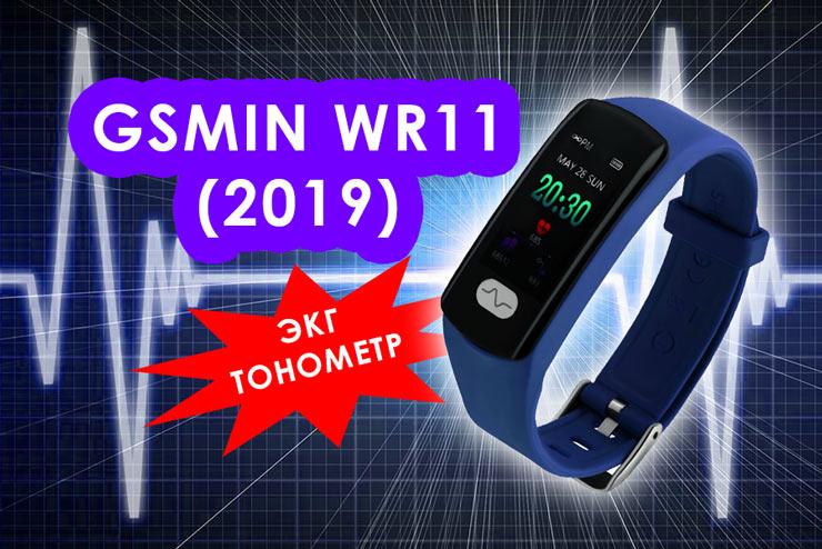 GSMIN WR11 (2019)