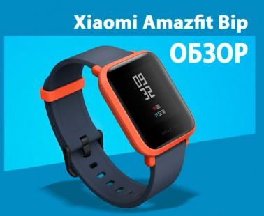 Xiaomi Amazfit Bip: обзор и инструкция по подключению